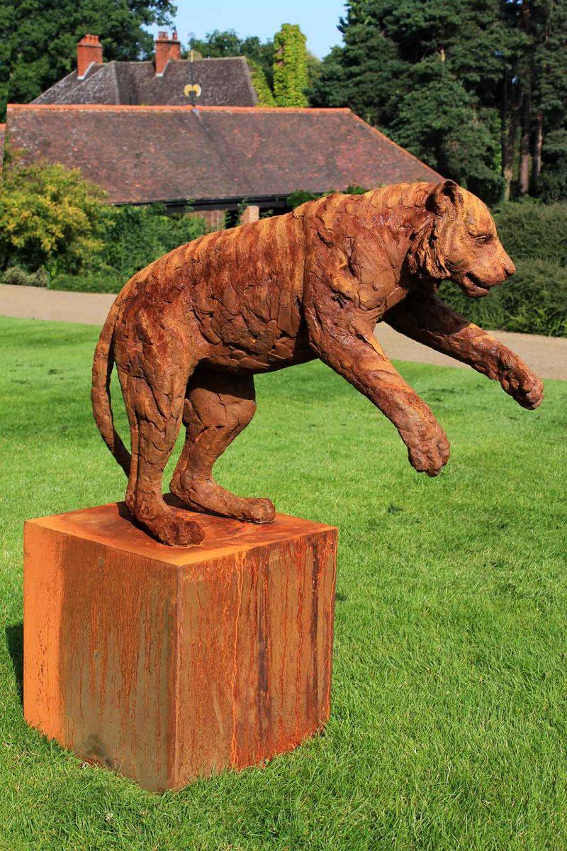 Sumatran Tiger - Adolescent sculpture